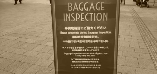 baggage inspection